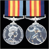 THE VIETNAM MEDAL 1964 - 1973