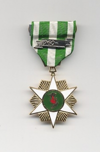 THE VIETNAM GOVERMENT SERVICE STAR