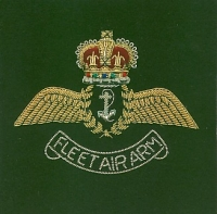 THE FLEET AIR ARM.