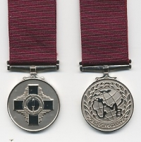 THE VETERANS SERVICE MEDAL.
