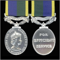TERRITORIAL EFFICIENCY MEDAL. EiiR. POST 1982