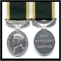 TERRITORIAL EFFICIENCY MEDAL. GEO.VI.