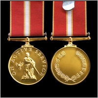 THE ACTIVE SERVICE MEDAL