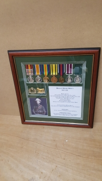 MEDALS AWARDED TO SHARRAD HOLLAND GILBERT