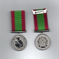 THE INTERNATIONAL NURSES MEDAL