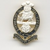 THE PRINCESS OF WALES ROYAL REGIMENT-OFFICERS CAP BADGE