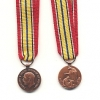 ALLIED SUBJECTS MEDAL