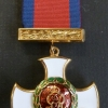 THE DISTINGUISHED SERVICE ORDER - GEO.V.